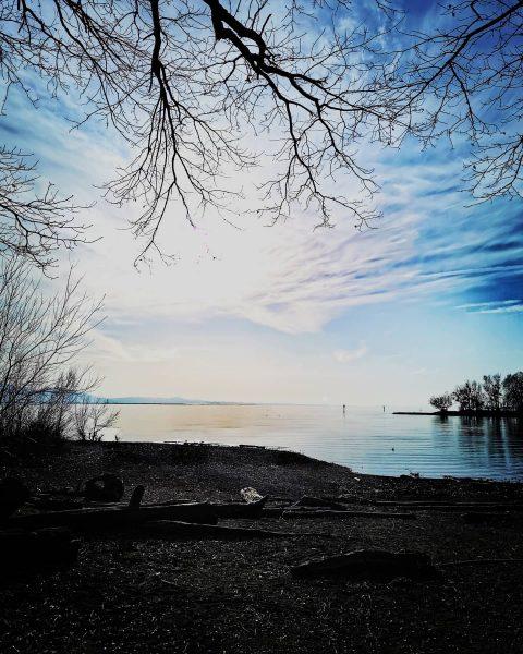 🔹Ufer🔹 Grenze zwischn Gewässer und Festland, trocken und nass, schwimma oda lofa... Es ...