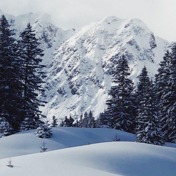 NATUR + GENUSS Der Winter hat sich zurück gemeldet und wir dürfen uns ...