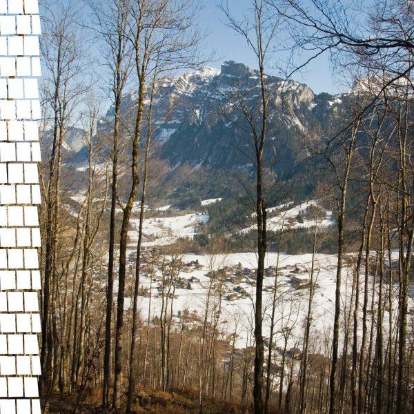Ein Blick um's Eck zeigt uns eine Natur, die sich offenbar noch nicht ganz entscheiden kann. Winter-Frühling-Winter?...