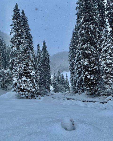 Der Winter am Arlberg ist zurückgekehrt. Die tief verschneite Landschaft lassen Gedanken schweifen ...