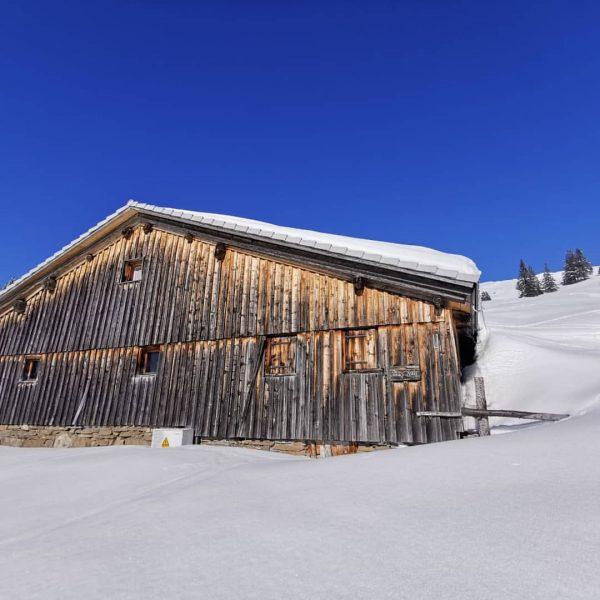 Es ist noch sehr winterlich auf der Alpe, trotzdem freuen wir uns jetzt ...