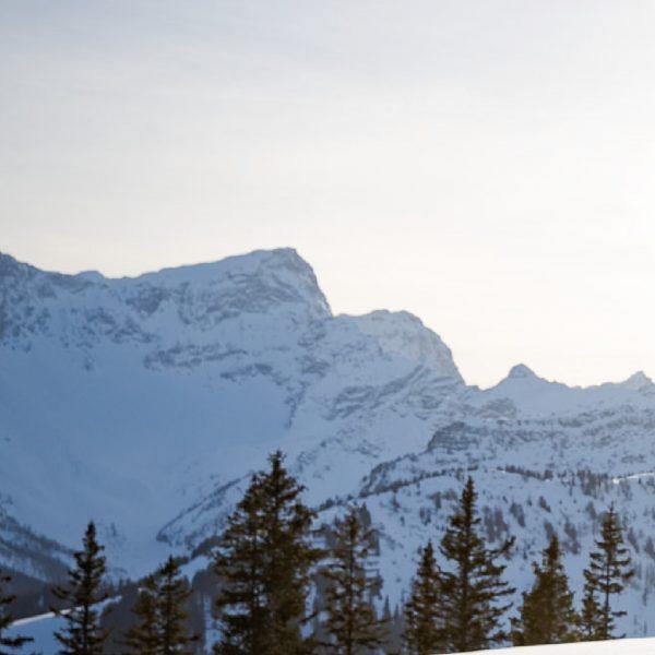 Wir bedanken uns in diesem Sinne für diese wunderbare, und doch spezielle Wintersaison. ...
