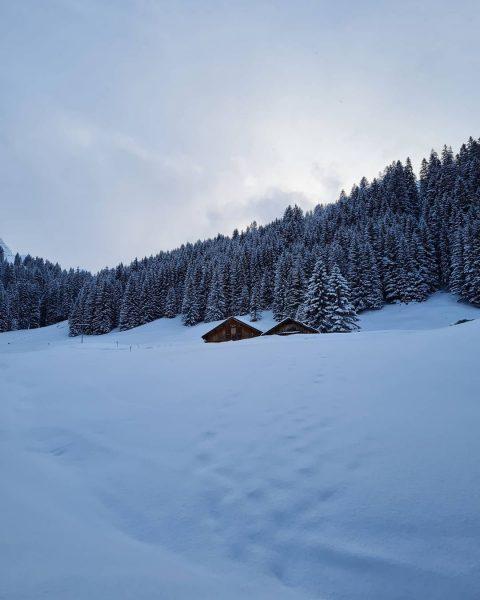 #bärgunthütte #kleinwalsertal #baad #winterwonderland #snow #wasfüreinausblick #kleinwalsertaltravel #schneetour #allgäu Bärgunthütte Kleinwalsertal