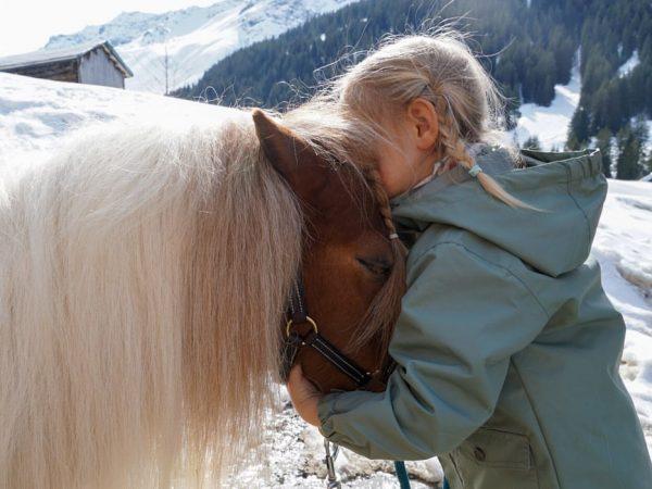 Das Glück der Erde liegt auf dem Rücken der Pferde! 🐴 Gargellen's @bergpferde.vergalden ...