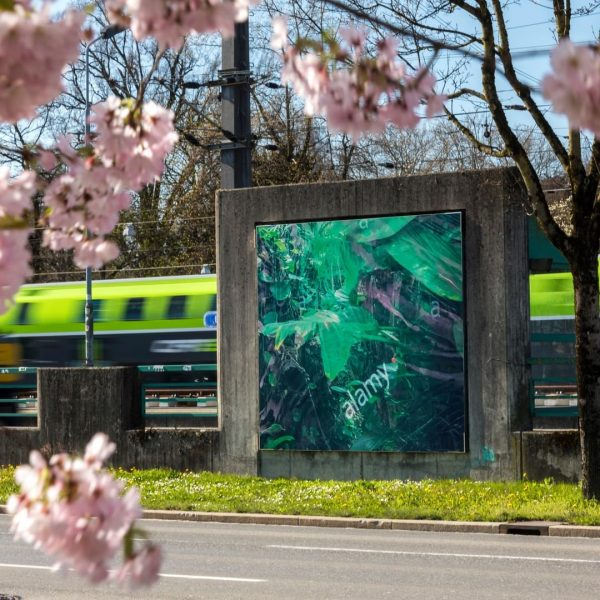 Lots of Green and some new KUB Billboards alongside the Seestraße in Bregenz. ...