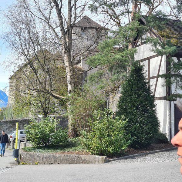 Fein wars 🍽 #schattenburgfeldkirch Schlosswirtschaft Schattenburg