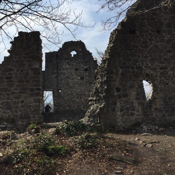 Ruine Neuburg in Koblach. Die ganze Burg ist begehbar. 🏰 auf unserem Blog unter Burgen und Ruinen...