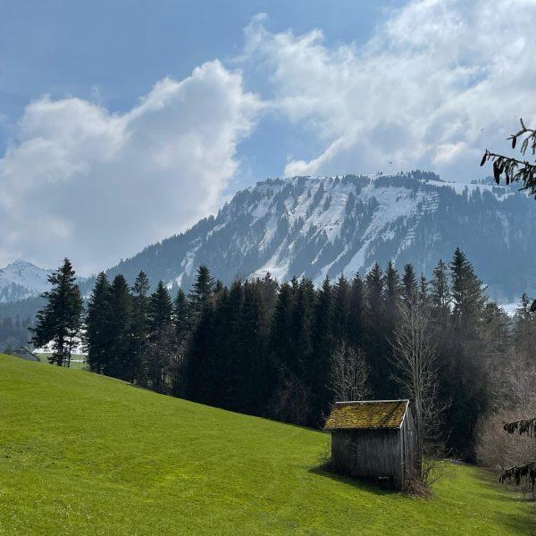 SPRING versus WINTER . . . . . #mountainlove #alps #spring #outdoor #visitbregenzerwald ...
