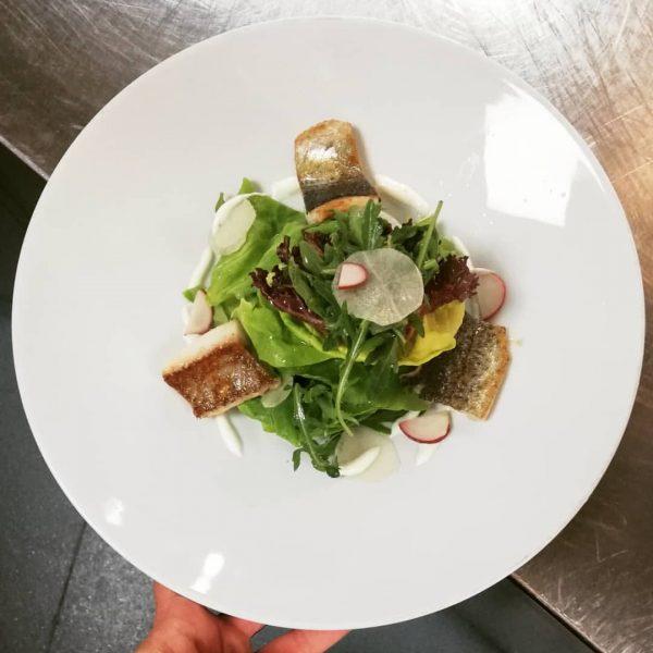 Frühlingssalate, Hecht&Forelle, eingelegter Rettich, Limettencreme Heute Abend ab 17.00 Uhr sind noch Tische ...