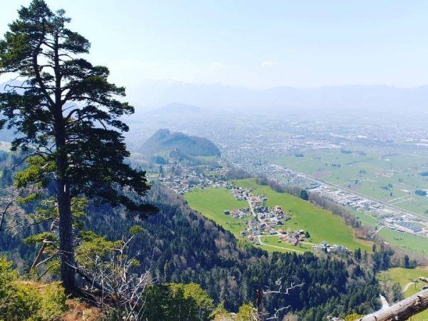 Traumhafter Ausblick vom Breitenberg auf Hohenems! #emspiriert #hohenems #nature #breitenberg #mountains #hiking #ausblick #aussicht #vorarlberg #visithohenems #explorevorarlberg...