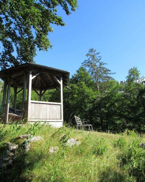 Sonne tanken beim Ölberg ☀️ Was macht ihr am Wochenende? #sonnenschein #sonnetanken #ölberg ...