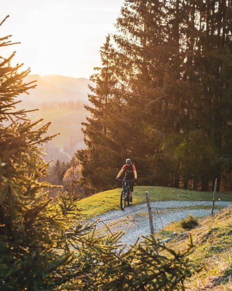 Und weil's so schön war, gings heute gleich wieder ab aufs Bike! 🚵 📸 by @julian_schmlzgr #bregenzerwald...