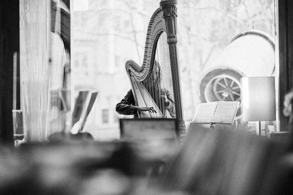 """Contra la marea"" astella_brenner #violine #portrait #blackandwhite #schwarzweiss #bodensee #harp #musician #musician #arpa ..."
