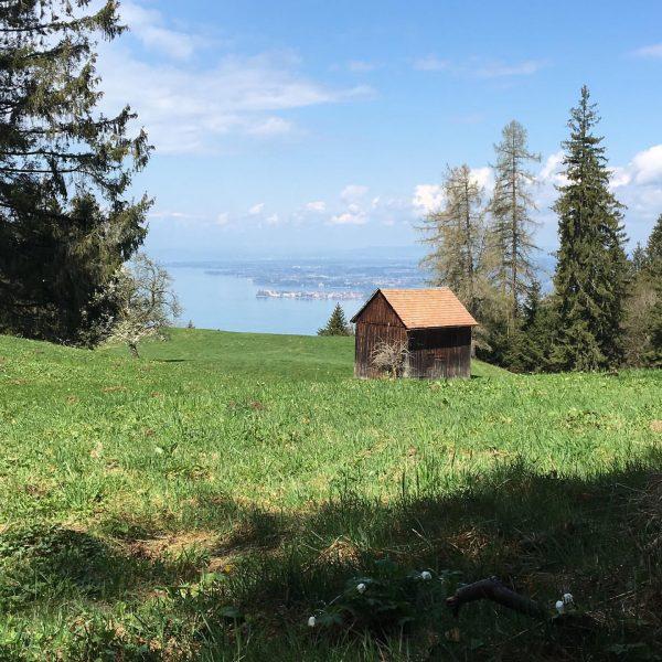 #pfänder #bodensee #hiking #dayoff Pfänder