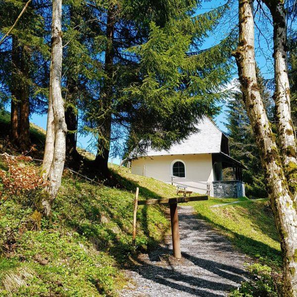 Schon mal hier gewesen? 🤔😉 Eine Wanderung zur 》 Ilgakapelle und Ilgaquelle《 gehört zu einem Sommerurlaub in...
