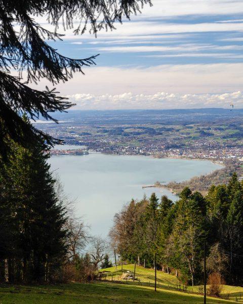 Spring at Lake Constance × × #lindau #pfänder #lakeofconstance #germany #bavaria #austria #switzerland ...