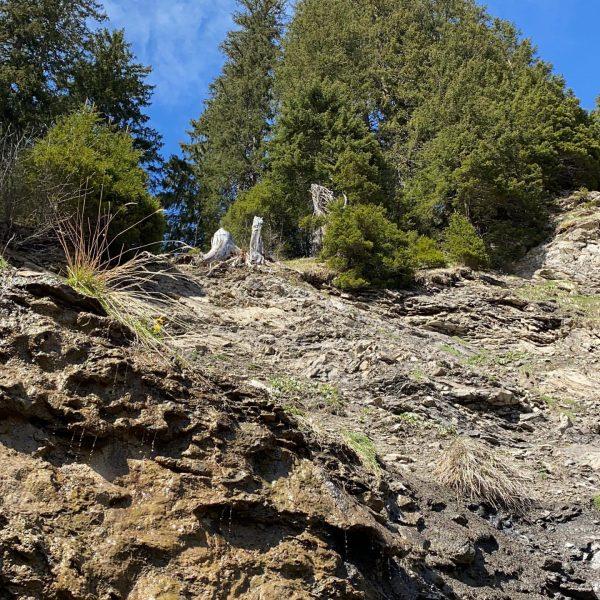 #warthschröcken #bregenzerwald #villanatur #traumhaft #bergliebe #urlaubindenbergen #urlaub #urlaubambauernhof #atemderberge #frühling Schröcken