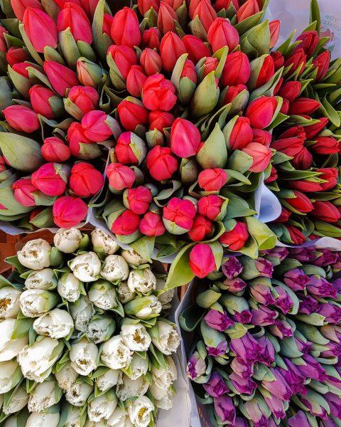 Blumen für Mama, gestern frisch besorgt vom Wochenmarkt in @6850dornbirn 💐👩👧👦. Wir feiern ...