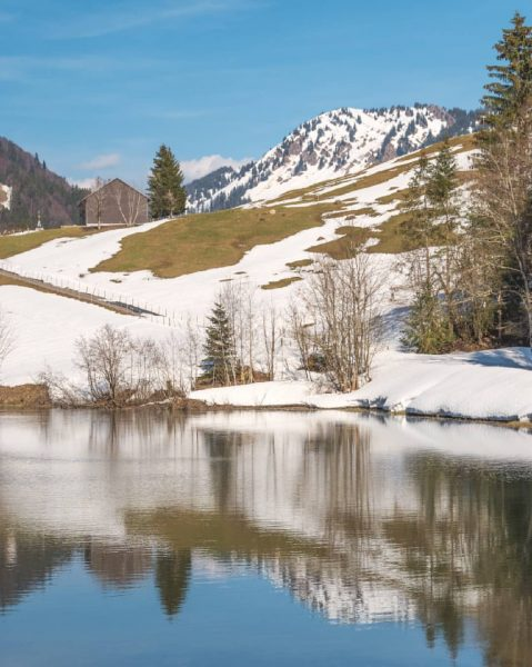 Takeover by @michaelmeusburger: Spring hike in the Lecknertal where nature slowly awakens at ...