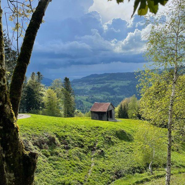 What a view after work #bregenzerwald #wonderful_places #potd #view #midoftheweek Riefensberg, Vorarlberg, Austria