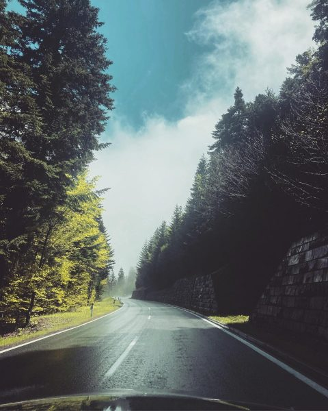 Running up that hill 🥳 #rideandhike #mountainsarecalling #weekendmode Bödele - Schwarzenberg