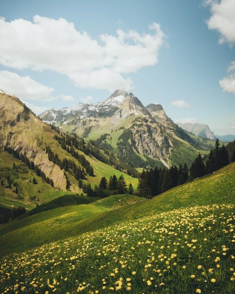 📍Schröcken . . . . . #visitaustria #voyaged #lensbible #fantastic_earth #ig_austria #weloveaustria #national_geographic ...