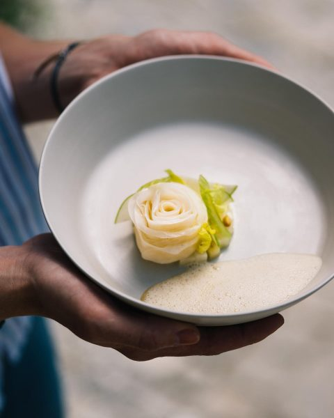 Sellerierose | Sellerie-Apfel-Salat | Sellerieschaum 🤍 Pic by @ingo.pertramer für ROTE WAND KOCHBUCH ...
