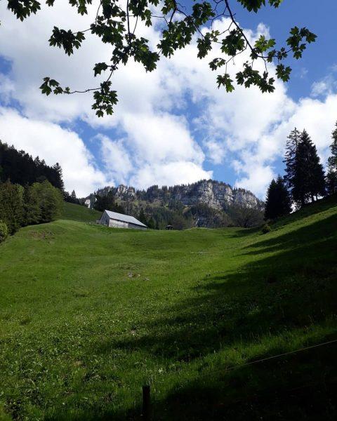 Alpe Ranzenberg bei Hohenems Die Bilder zeigen den Blick auf die Alpe Ranzenberg ...