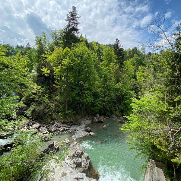 Rappenlochschlucht #wandern #family #nature #schlucht #canyon #vorarlberg #vorarlbergwandern #alpen #alpenliebe #alps #alpy #dornbirn ...