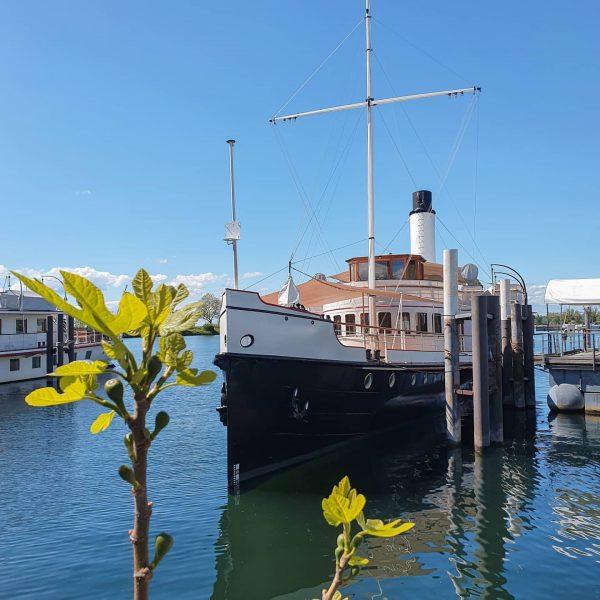 Das über 100 Jahre alte österreichische Dampfschiff Hohentwiel ist das älteste Passagierschiff auf ...