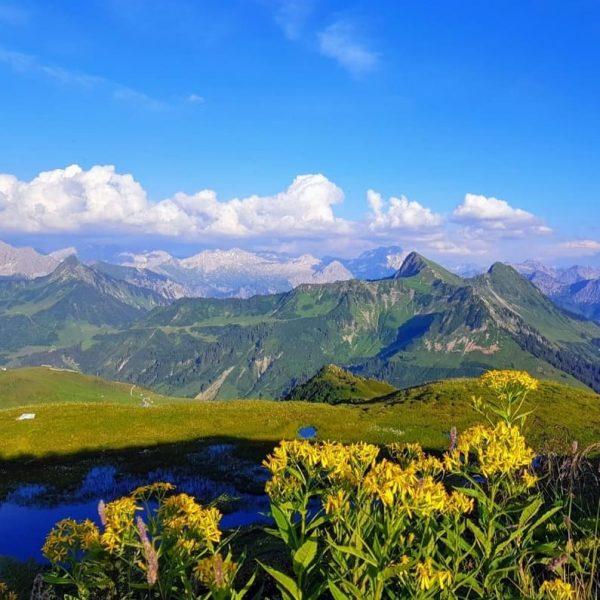 Manchmal muß man einfach in die Berge 🇦🇹🏔☀️ #visitvorarlberg #vorarlbergwandern #vorarlbergphotography #venividivorarlberg #vorarlberg ...