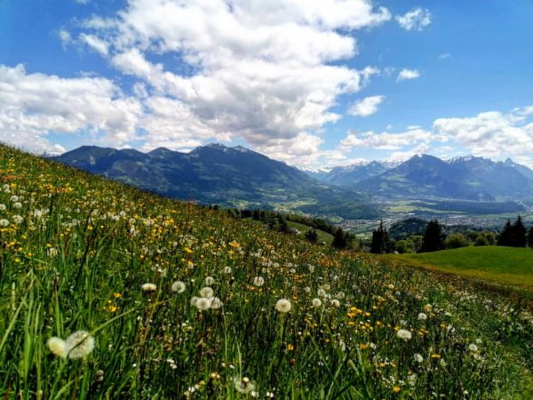 ❤️❤️❤️ #górycudnatury #idzielato #summervibes #nature #naturelover #bergsüchtig #bergliebe #bergwelten #mountainview #mountains #alps #austria ...