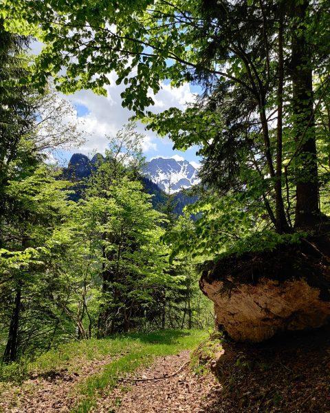 #wandern #schönenbach #alpen #wandertour #berge #voralberg #bregenzerwald #osterguntenbach Schönenbach Alp, Vorarlberg, Austria