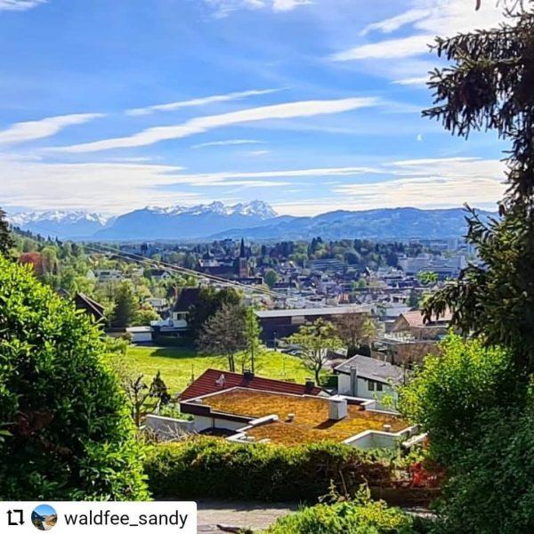 Vielen Dank an @waldfee_sandy für diesen wunderschönen Ausblick! ... Eine kleine Wanderung am Pfänder mit toller Aussicht...