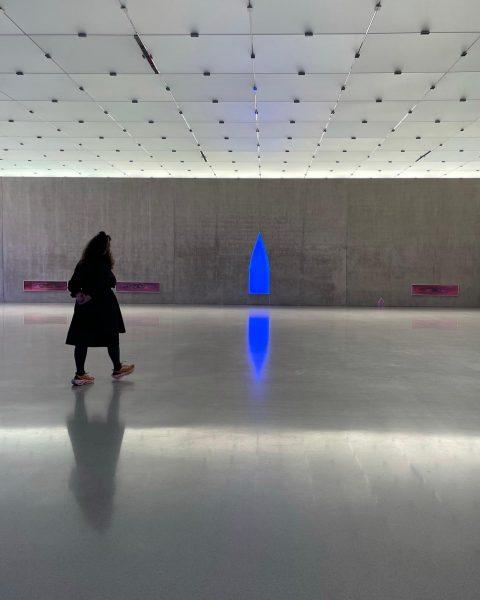 Pamela Rosenkranz - House of Meme - Kunsthaus Bregenz . #pamelarosenkranz #houseofmeme #kunsthausbregenz ...