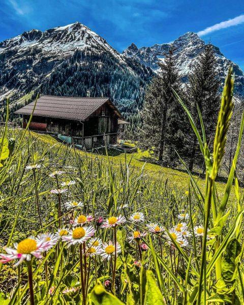 •🏔Baader Alpenrunde mit Blick auf den wunderschönen Widderstein🏔• #alpen #allgäutourist #allgäu #alps #allgäueralpen ...
