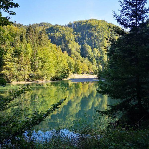 Staufensee, Dornbirn #staufensee #dornbirn #vorarlberg #westaustria #visitvorarlberg #naturephotos #naturfotos #naturliebe #naturelike #naturfoto #lake ...