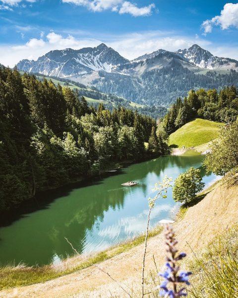 lakeforestlake oder auch seewaldsee. 🏞 #feelaustria #visitaustria #visitvorarlberg #bikelife #cycling #seewaldsee #exploreourearth #weroamhome ...
