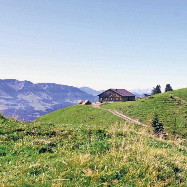 Ein Ausflug zum Vatertag (13. Juni) auf die Alpe Hochleckach und Toserloch in ...