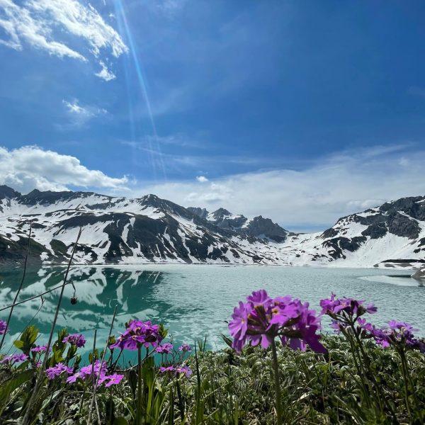 #bergliebe #berge #brandnertal #österreich #kurztrip #lünersee #valavier #blumenliebe #sun #familytime #family #qualitytime #zeitindenbergen ...