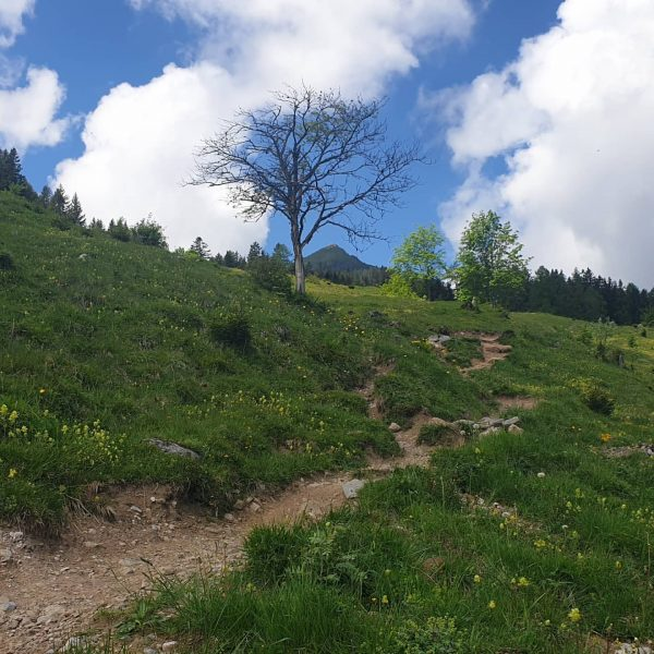 #mondspitze #visitvorarlberg #meintraumtag #mountains #motivation #brandnertal Mondspitze