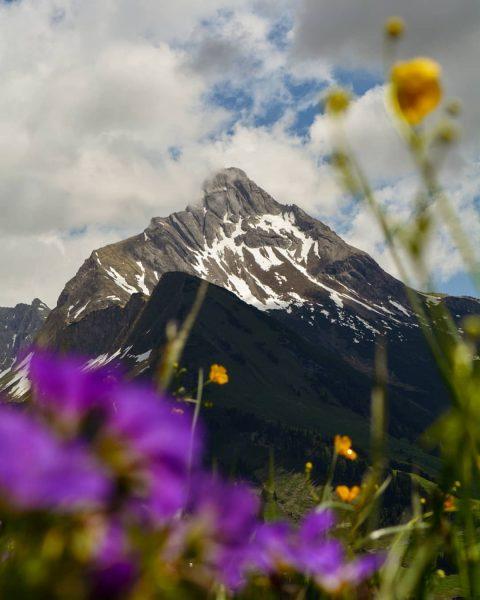 Summer days in Warth and an amazing Biberkopf view 🌞😍⛰️ #vorarlberg #austria #österreich ...