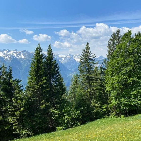 Unser Wochenend-Tipp: Wanderung zur Fraßenhütte 🏔☀️ Die rund vierstündige Wanderung beginnt bei der ...