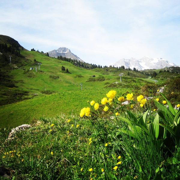 Frühling bei Warth Berghütten.com .. #warth #schröcken #hochkrumbach #kalbelesee #salober #saloberalm #widderstein #körbersee ...