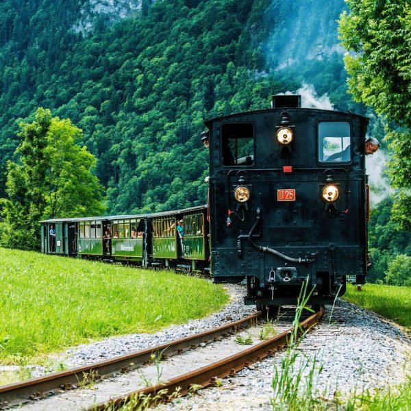 Fahrt mit dem Wälderbähnle 🚂💨 Die historischen Dampf- und Diesellokomotiven ermöglichen ein nostalgisches ...