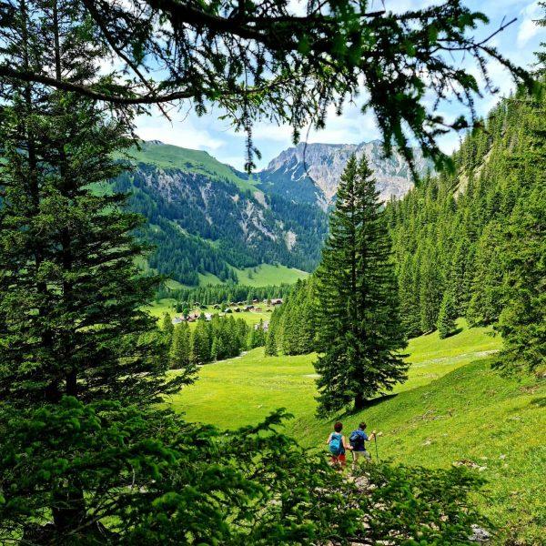 Biotel unterwegs #ländle #nenzingerhimmel #hirschsee #bergliebe #aufregendefahrt #herrlicheswetter #wunderbar #schönestal #panüler #zauberhaft #alpenregionbludenz ...