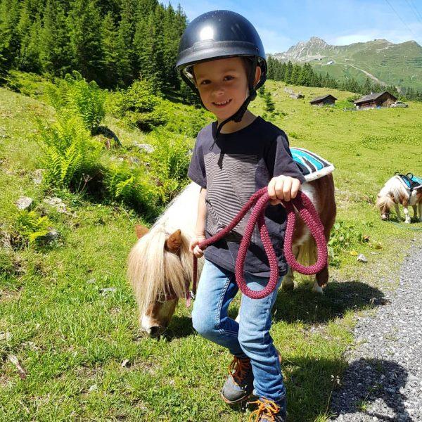 ⛰Abenteuer Alpe Vergalden⛰ Heute sind wir das erste mal mit den Ponys zur Alpe Vergalden gelaufen und...