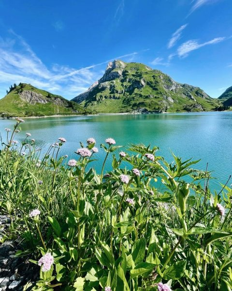 DREAM DAY 💙🌿 Such a beautiful mountain summer day in Lech Zürs is ...