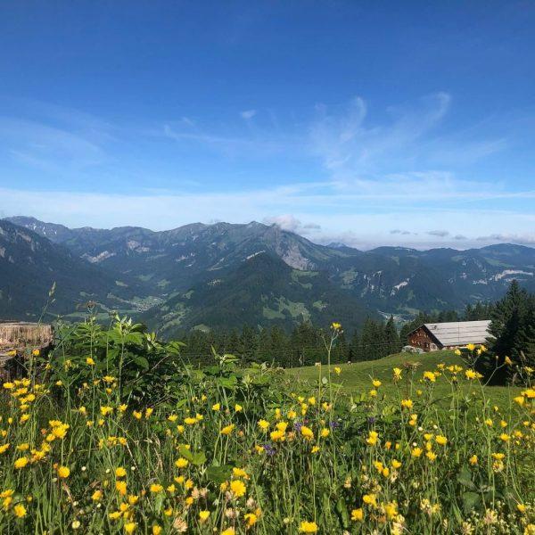 Zwischen Schnepfau und dem Hirschberg liegt die Alpe Unterer Hirschberg, welche von dem ...