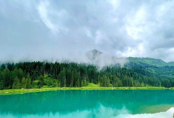 Wunderschönes #schwarzwassertal 🥰 - als #ausweichtour bei #regen einfach immer machbar - #melköde ...